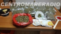 "LADISPOLI – SCOPERTO DAI CARABINIERI UN ""GROW SHOP ILLEGALE"".  COMMERCIANTE ARRESTATO E SEQUESTRATI QUASI 4 CHILI DI MARIJUANA"